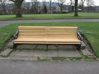 Bowling Green Southeast bench after