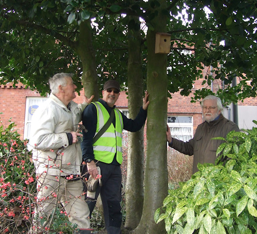 Nest boxes donated by Marple Naturalists