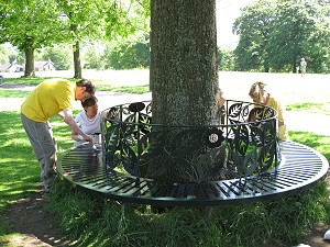 The Coronation Bench gets some TLC.