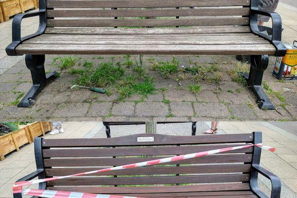 benches-10-06-21cA1563E93-2E29-7F8A-DFA2-EEB7A08BFC21.jpg