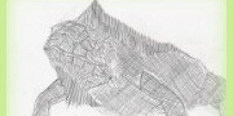 brynshipperleeyr32FF09A9E-DDD6-D0A0-446E-35BBC904D61F.jpg