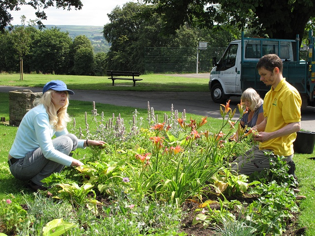Friends of the Park working in their flowerbeds