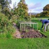 Allotment Bed