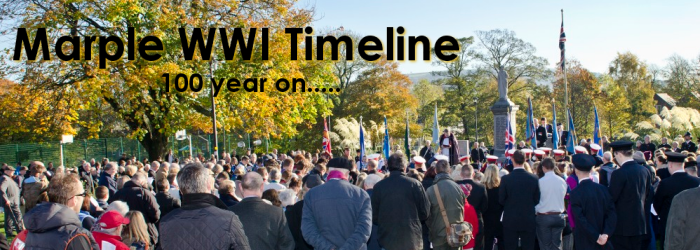Marple WWI Timeline Tribute